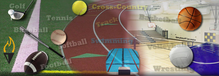 Merged photo of sport fields and balls used in those sports
