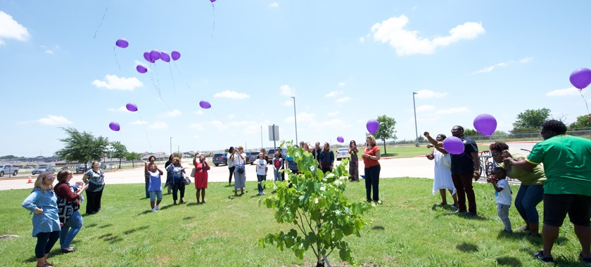 Haynes ES tree dedication