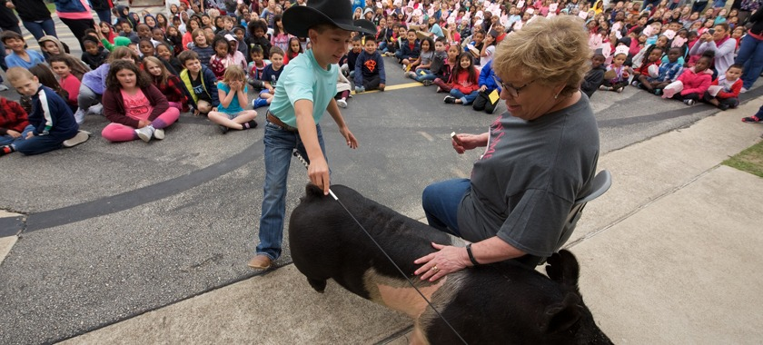 HHES principal kisses pig to motivate students.